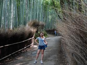 RED_009_Bamboo_path_(Kyoto)