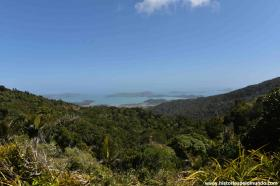 RED_006_Coromandel_vista_do_alto_das_montanhas