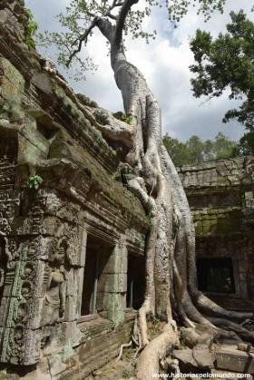 RED_001_Ta_Prohm_Angkor