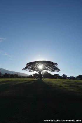 RED_005_Nosso_camping_em_Ngorongoro