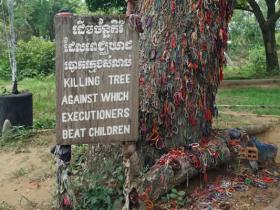 RED_002_Árvore_usada_como_parede_para_matar_crianças_e_bebês
