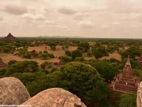 RED_005b_Bagan